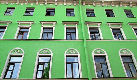 Пазл с зелёной стеной