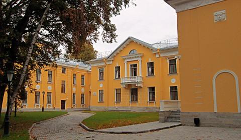 Пазл с жёлтым домом