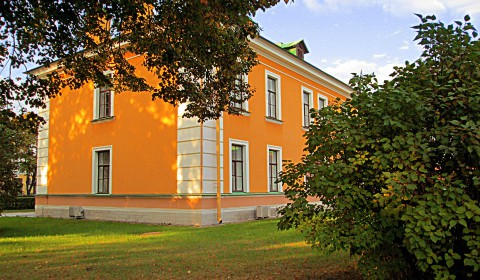 Пазл с жёлтым домом за кустами