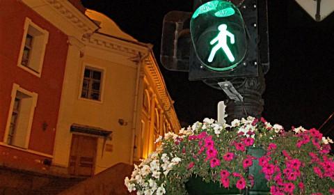 Пазл со светофором